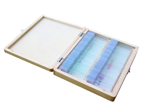 Astronomy Alive - Saxon Biological Microscope Slide Set 100 Piece