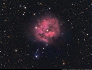 Astronomy Alive - Orion Optics ODK12 Dall Kirkham Reflecting telescope