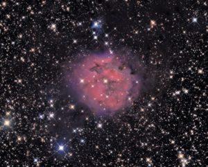 Astronomy Alive - Orion Optics ODK14 Dall Kirkham Reflecting telescope