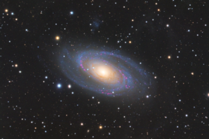 Astronomy Alive Reference Series 130 - M81